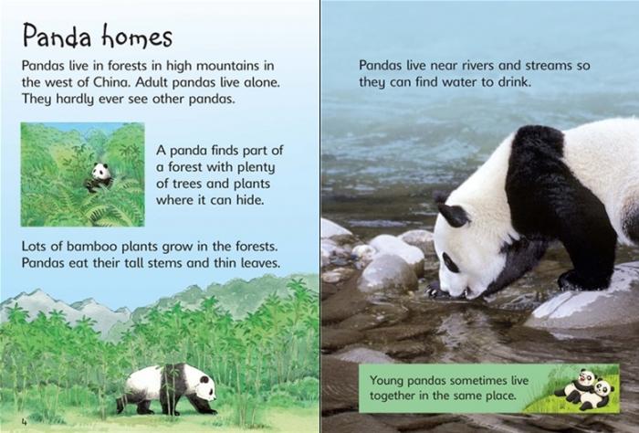 Pandas [1]