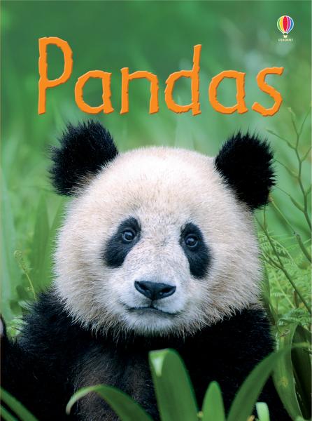 Pandas [0]