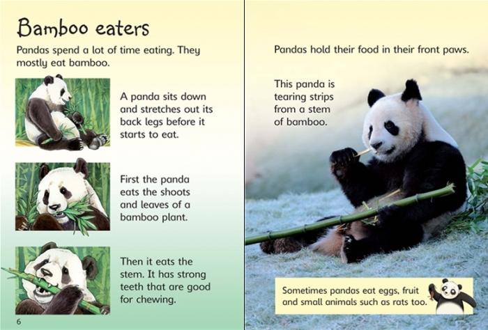 Pandas [2]