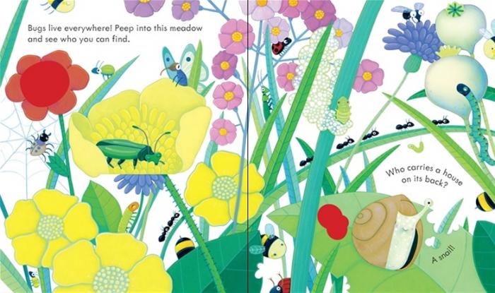 Peep Inside Bug Homes [1]