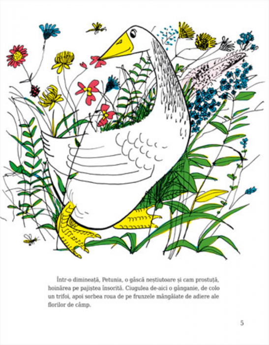 Petunia [1]