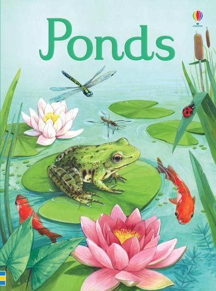 Ponds [0]