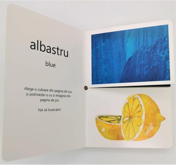 Prima mea carte despre culori [1]