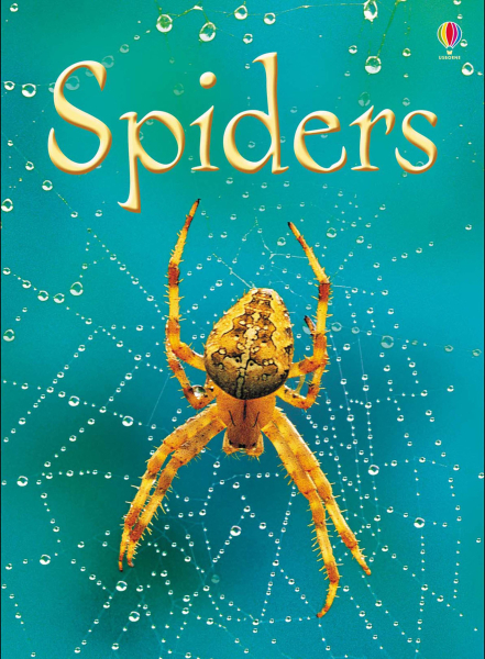 Spiders [0]