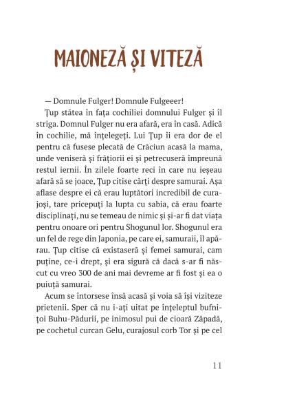 Țup și pădurea încremenită – cartea 3 [1]