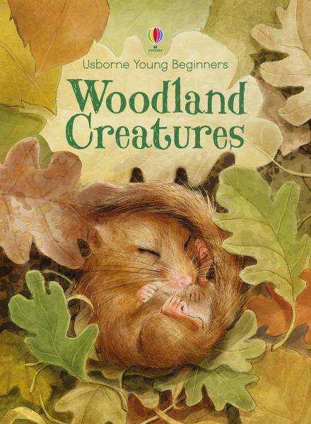 Woodland creatures [4]