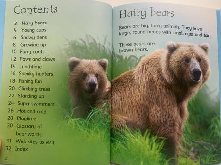 Bears [1]