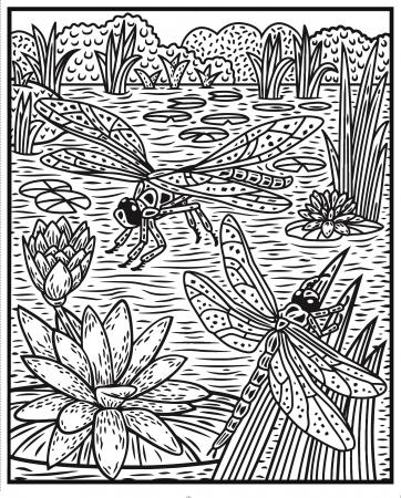 Bugs Magic Painting Book [3]
