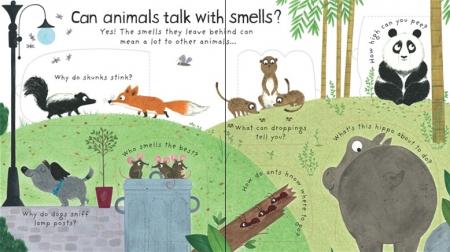 How do animals talk? [3]