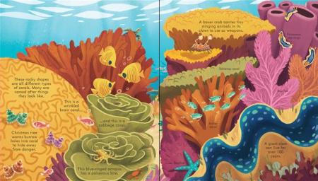 Look inside seas and oceans [2]