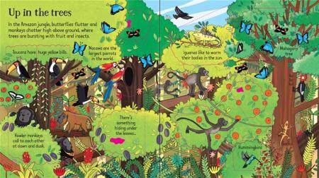 Look inside the jungle [2]