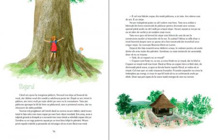 Luli și căsuța din copac [4]