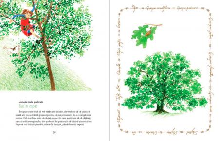 Luli și căsuța din copac [5]