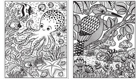 Magic painting Animals [2]