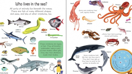 My first seas and oceans book [1]
