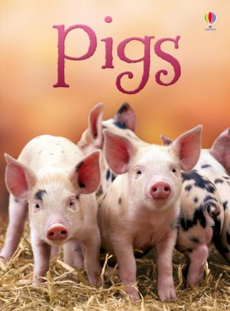 Pigs [0]
