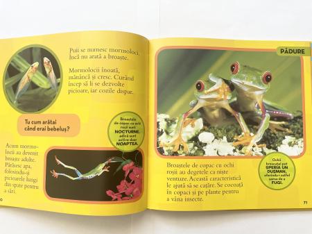 Prima mea carte despre animale [3]