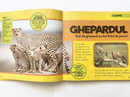 Prima mea carte despre animale [1]