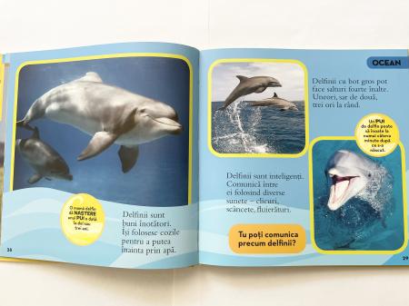 Prima mea carte despre animale [4]