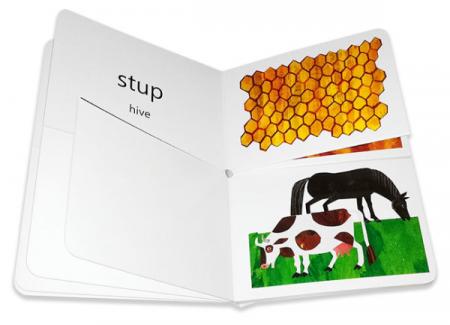 Prima mea carte despre casele animalelor [1]
