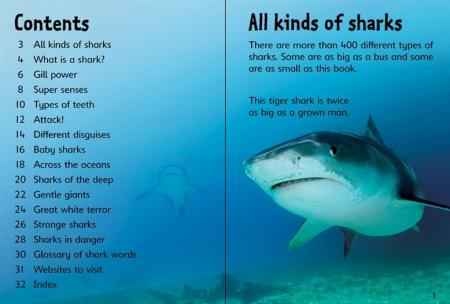Sharks [4]