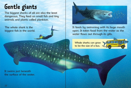Sharks [3]