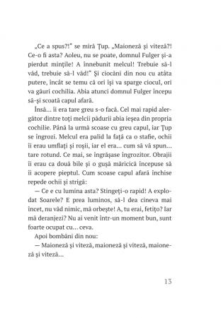 Țup și pădurea încremenită – cartea 3 [3]