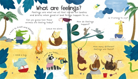 What are feelings? [1]