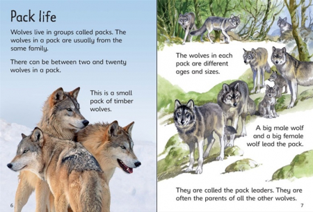 Wolves [2]
