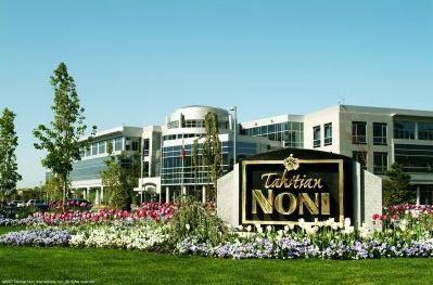 Ce este Compania Morinda?