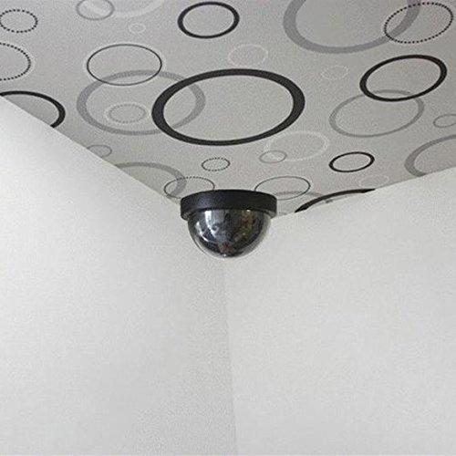 Camera supraveghere falsa First Alarm H8711252765020, interior-exterior 3