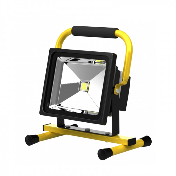 Proiector LED economic Troy 28003, 30 W 0