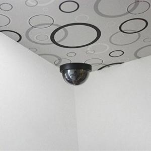 Camera supraveghere falsa First Alarm H8711252765020, interior-exterior3
