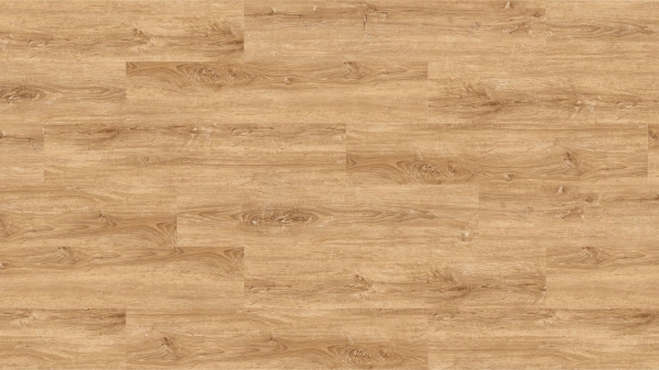 PARCHET PLUTA - Chalk Oak-HYDROCORK 0