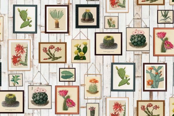 Tapet R15321- Cactus Wall Art 0