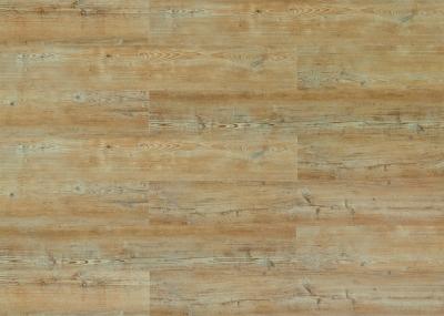 PARCHET PLUTA - Arcadian Soya Pine-HYDROCORK0