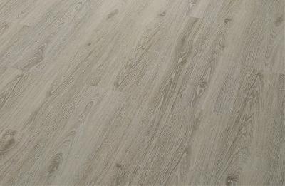 PARCHET PLUTA -Limed Grey Oak-HYDROCORK [1]