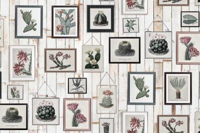 Tapet R15322-Cactus Wall Art0