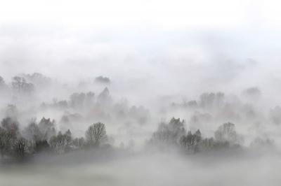 Tapet R15301- Morning Fog0
