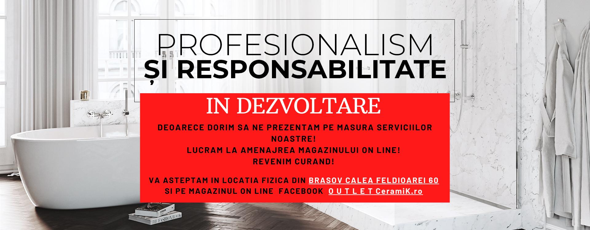 Profesionalism si responsabilitate
