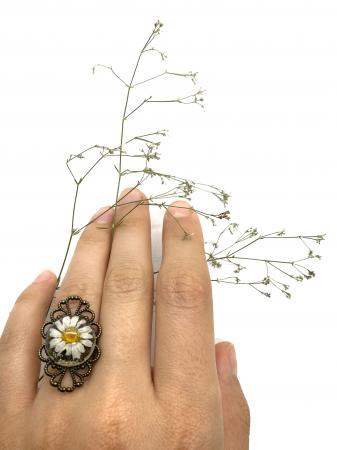 Inel cu flore de margareta cercercei [0]