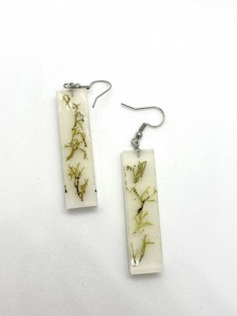 Cercei cu licheni2