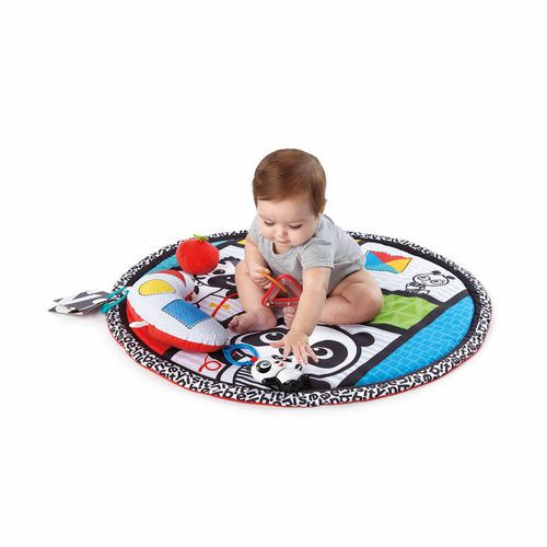 Baby Einstein - Salteluta de activitati Bold New World 3