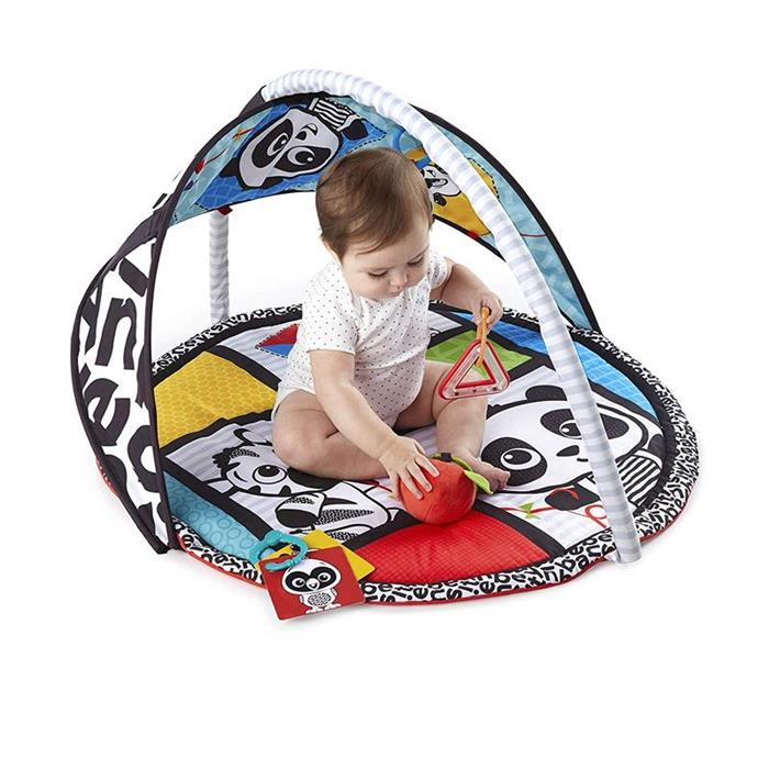 Baby Einstein - Salteluta de activitati Bold New World 2