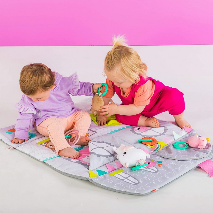 Bright Starts - Salteluta de activitati & Casuta de papusi Floors of Fun 2