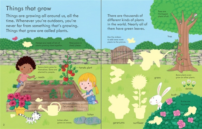 My first book about how things grow 3