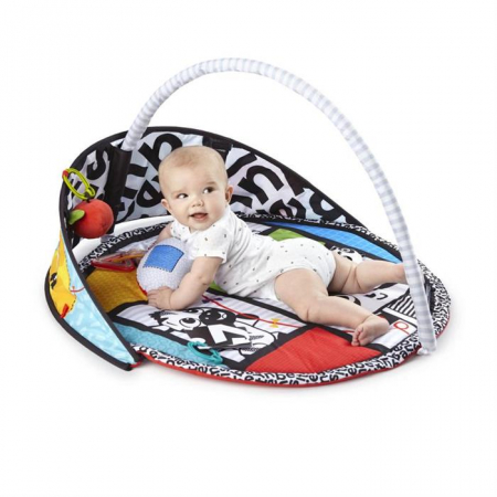 Baby Einstein - Salteluta de activitati Bold New World0