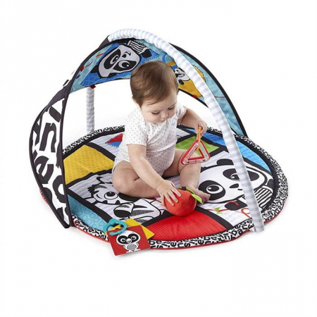 Baby Einstein - Salteluta de activitati Bold New World2