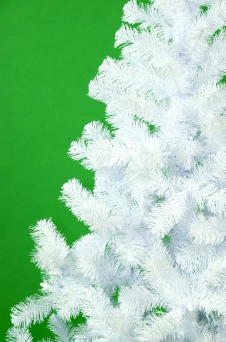 Brad artificial de Craciun Gigante della foresta 150 cm alb [1]
