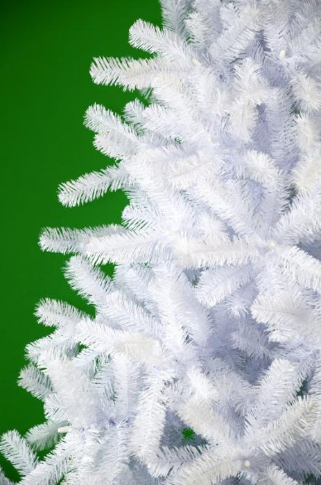 Brad Babbo Natale  200 cm alb 1